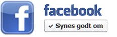 Facebook Logo Botton